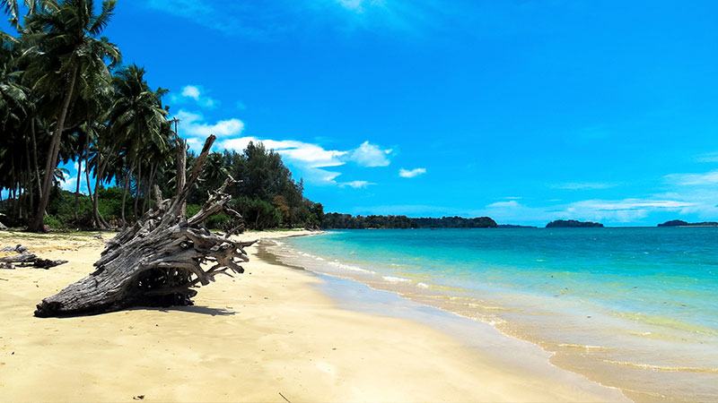 Andaman tour pckages