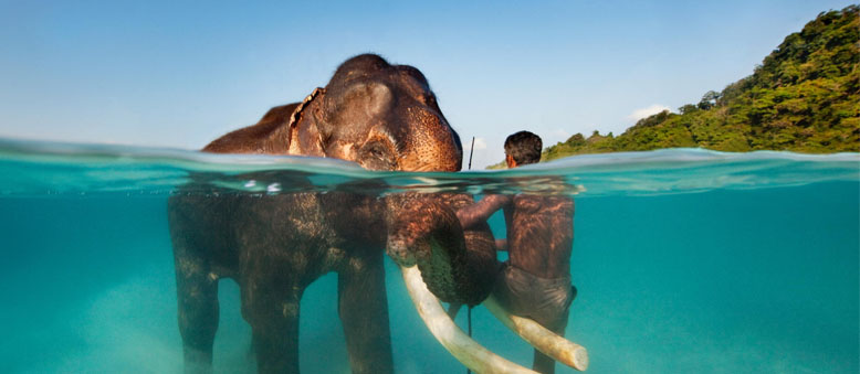 Andaman Tour Packages From Kolkata | Best Selling Packages